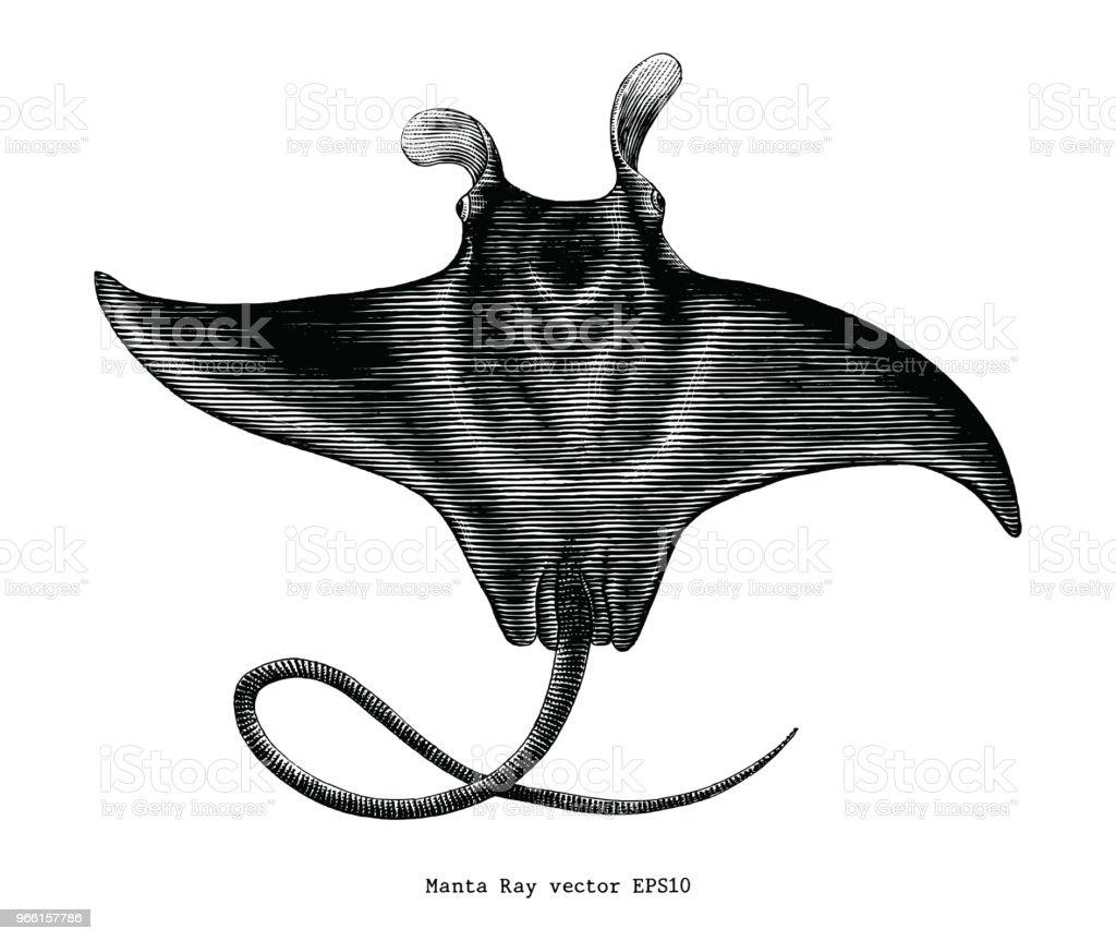 Manta ray vintage ClipArt - Royaltyfri Bild vektorgrafik