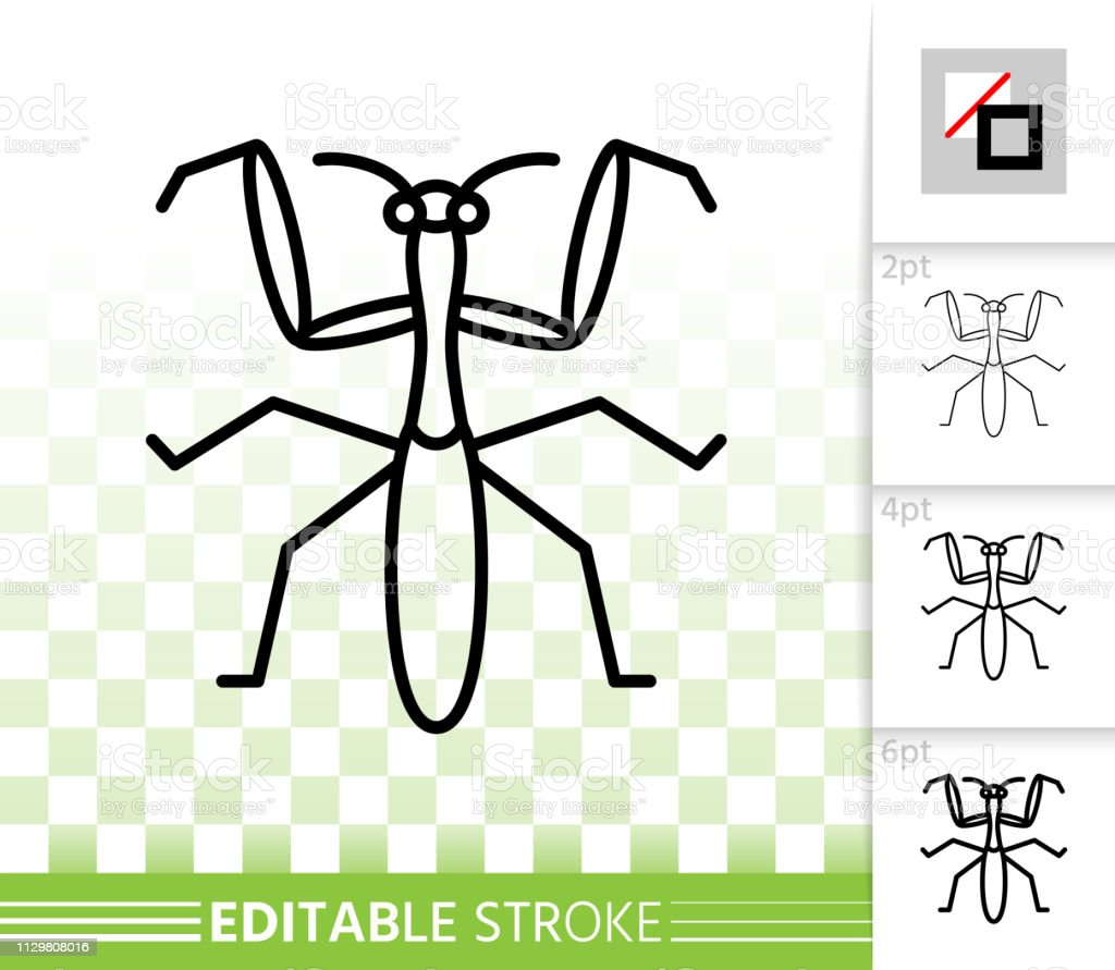 Mantis Bug Insect Simple Black Line Vector Icon Stock