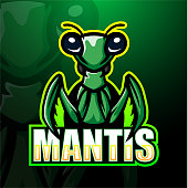 Mantis, photo illustration, art impression