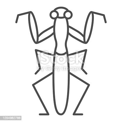 istock Mantis thin line icon, Insects concept, Beetle sign on white background, praying mantis icon in outline style for mobile concept and web design. Vector graphics. 1254982788