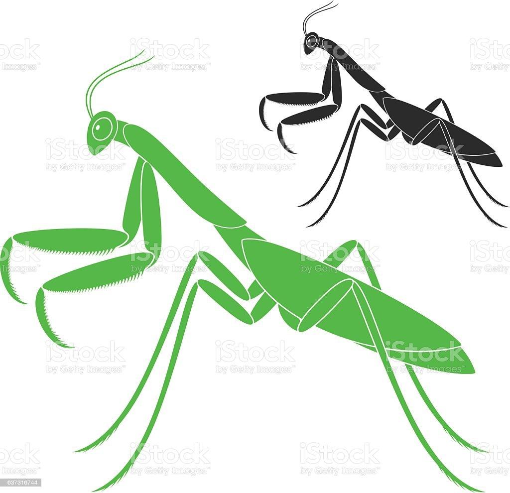 royalty free praying mantis clip art vector images illustrations rh istockphoto com Praying Mantis Signs cute praying mantis clipart