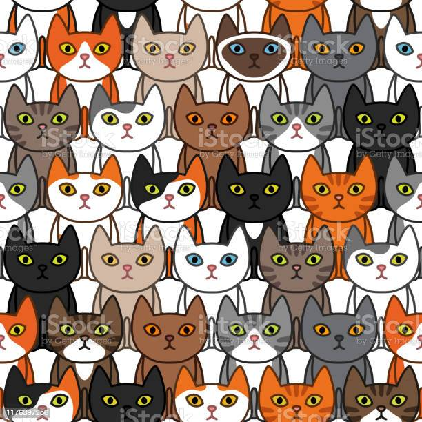 Many different ute cats seamless pattern vector id1176397256?b=1&k=6&m=1176397256&s=612x612&h=lfx4g7q63bjcz0xz1i 9u18u6sqpj94at5x23icn9yy=