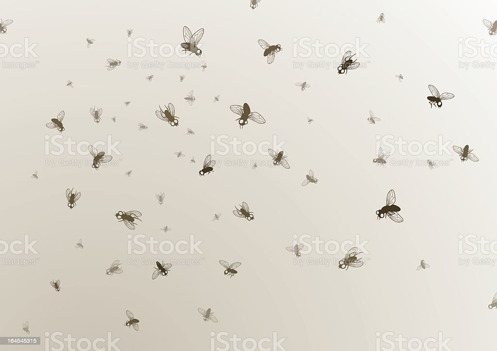 Many large and small black flies on a tan background vector art illustration