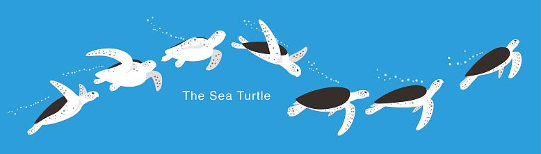 Many Sea Turtle swimming in the sea,  vector