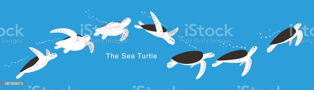 Many Sea Turtle swimming in the sea,  vector vector art illustration