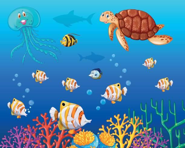 many types of sea animals under the ocean - schwimmpflanzen stock-grafiken, -clipart, -cartoons und -symbole