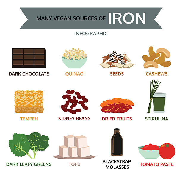 many vegan sources of iron, food info graphic, vector many vegan sources of iron, food info graphic, vector temps stock illustrations
