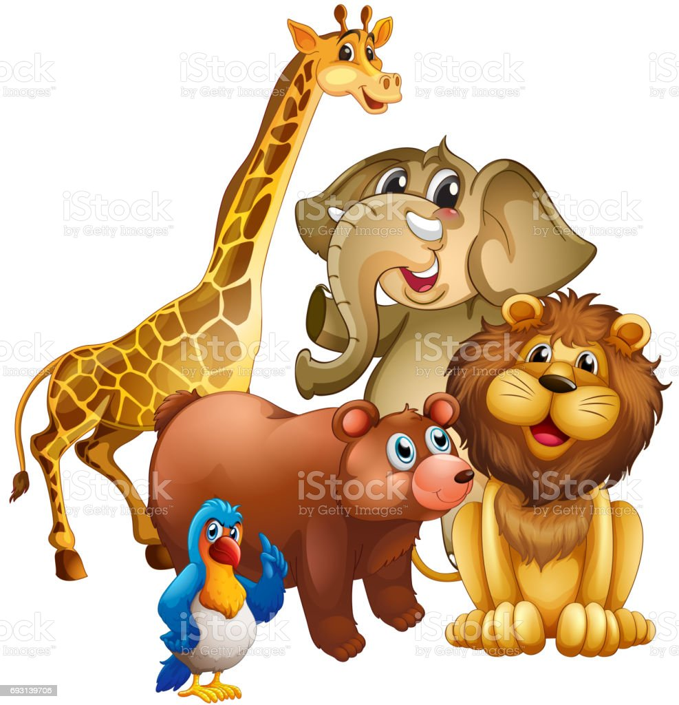 Many Wild Animals In The Zoo Stock Illustration - Download Image Now -  iStock