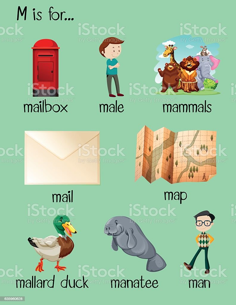 many words begin with letter o stock vector many words begin with letter m stock vector 635960628 308