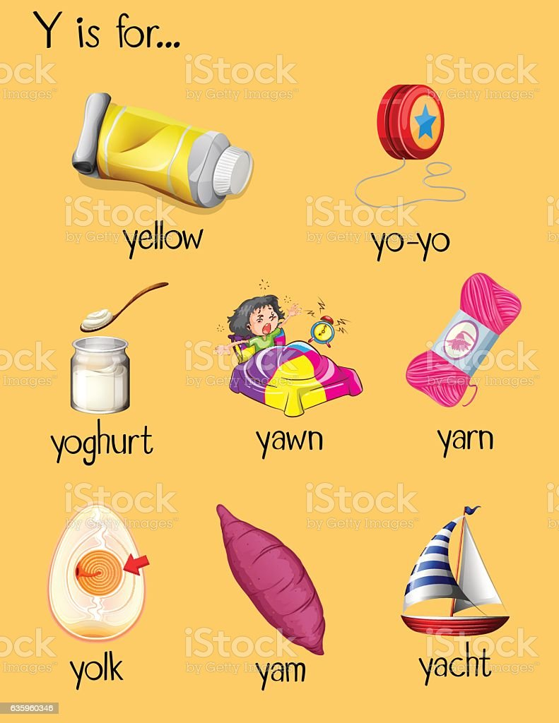 Images Of Objects Starting With Letter Y