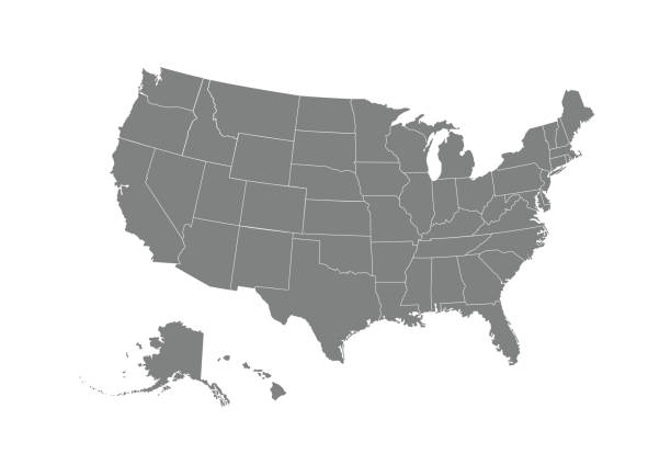 USA map. Flat style - stock vector. USA map. Flat style - stock vector. vector stock illustrations
