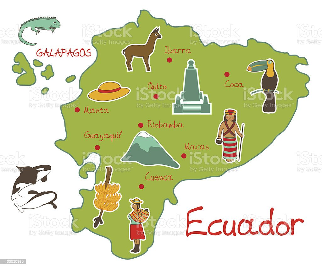 Map of Ecuador with typical features Vector illustration of map of Ecuador with typical features Alpaca stock vector