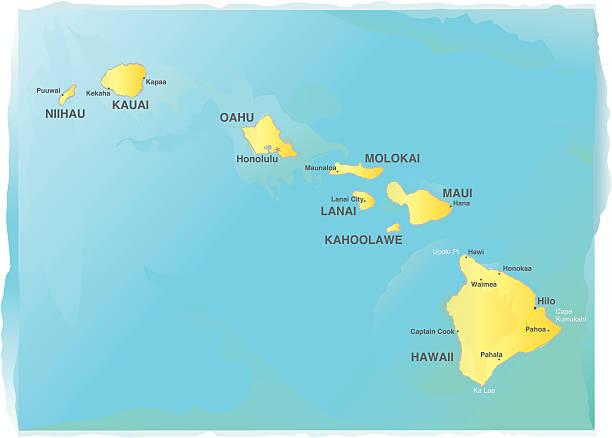 bildbanksillustrationer, clip art samt tecknat material och ikoner med map of hawaii - watercolor style - delstat hawaii