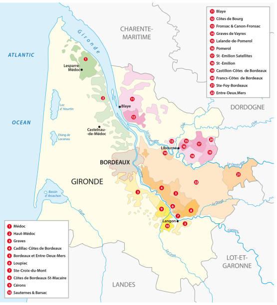 karte der französischen weinbauregion bordeaux - weinkarte stock-grafiken, -clipart, -cartoons und -symbole