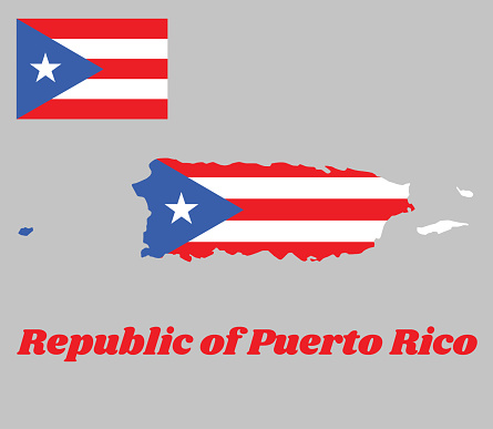 Map outline of Puerto Rico, horizontal white and red bands with isosceles triangle based on the hoist side and white star.