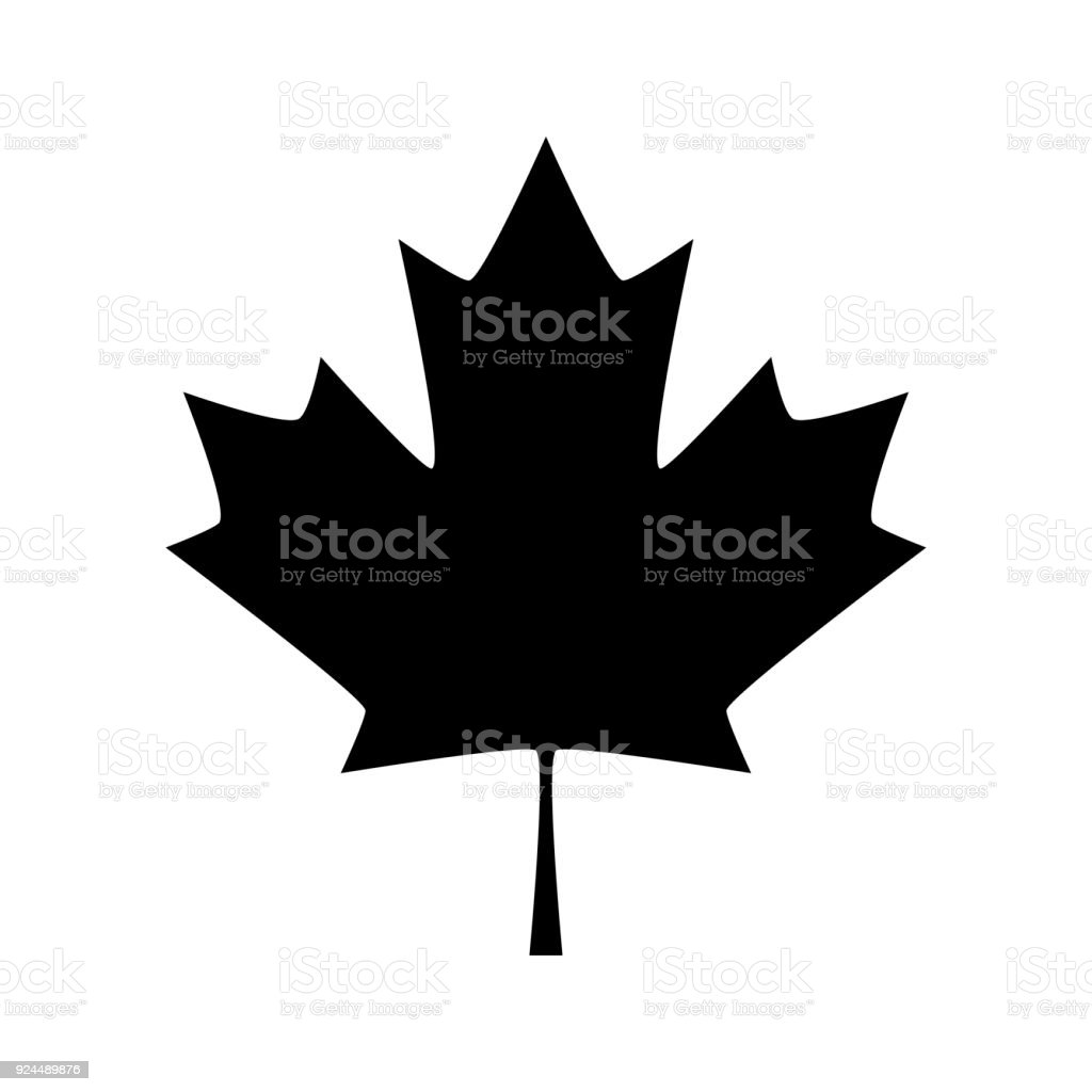 Maple Leaf Canada Symbol Maple Leaf Stock Vector Art More Images