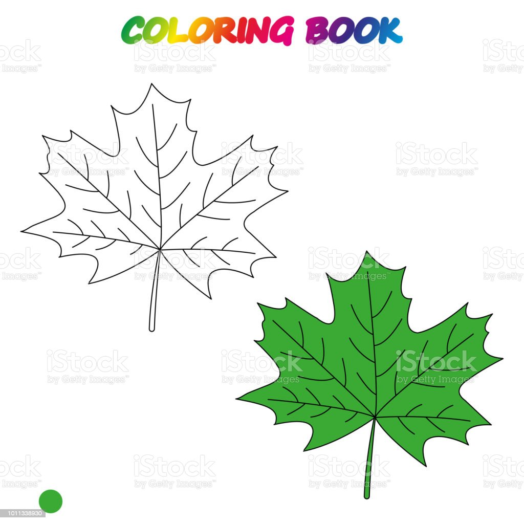 Maple Leaf Coloring Book Coloring Page To Educate Preschool Kids