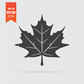 Maple leaf icon in flat style isolated on grey background.