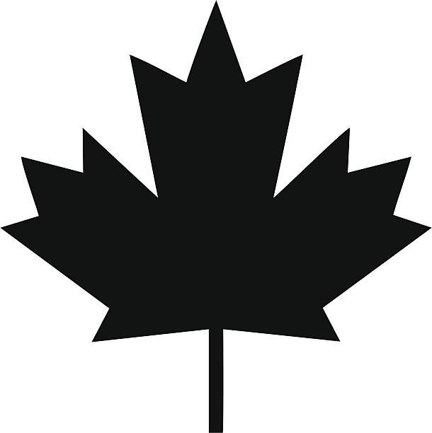 Ahornblatt, Symbol – Vektorgrafik
