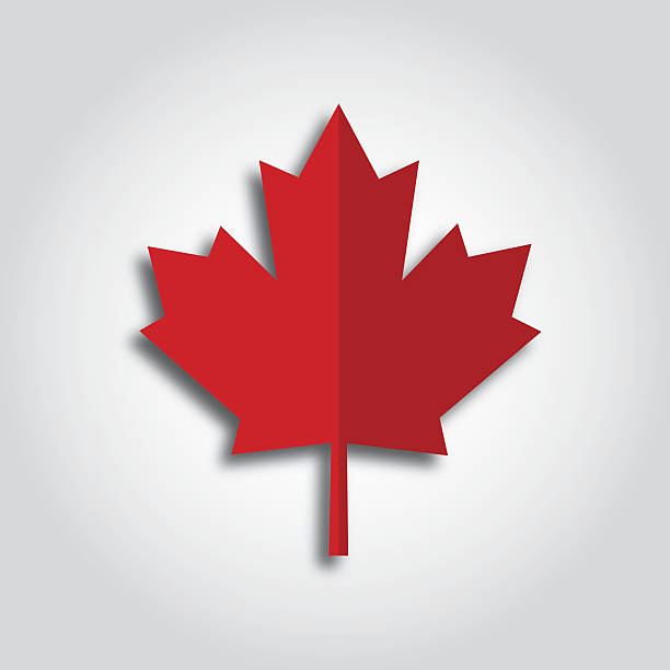 Maple Leaf Icon vector art illustration