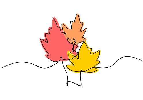 Maple leaf line art. One continuous line drawing abstract tropic spring isolated vector object on white background. Botany natural eco concept. Autumn leaves hand drawn design minimalism style