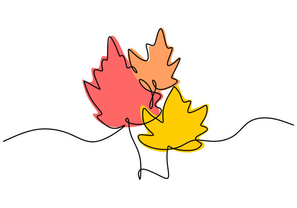 Maple leaf line art. One continuous line drawing abstract tropic spring isolated vector object on white background. Botany natural eco concept. Autumn leaves hand drawn design minimalism style Maple leaf line art. One continuous line drawing abstract tropic spring isolated vector object on white background. Botany natural eco concept. Autumn leaves hand drawn design minimalism style autumn symbols stock illustrations