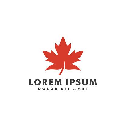 Maple leaf logotype design vector illustration template