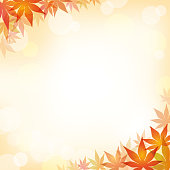 Maple leaf square frame with text space, vector illustration.