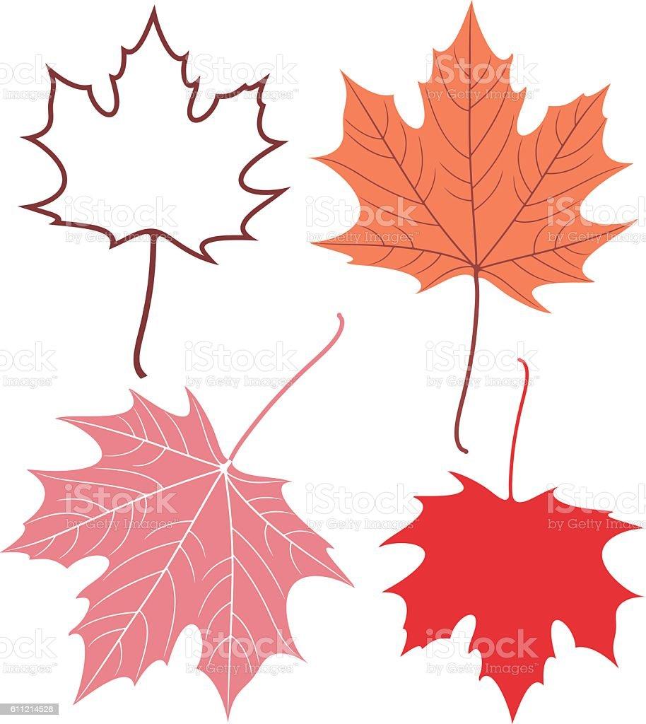 Maple leaf  – Vektorgrafik
