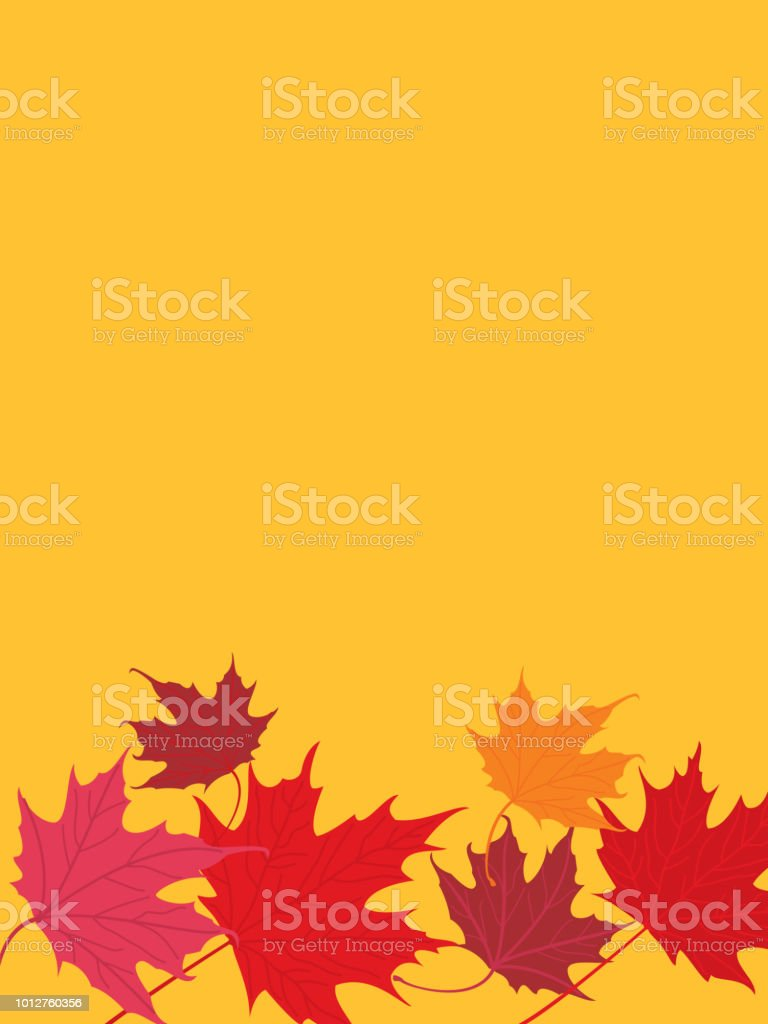Maple Leaves Background vector art illustration