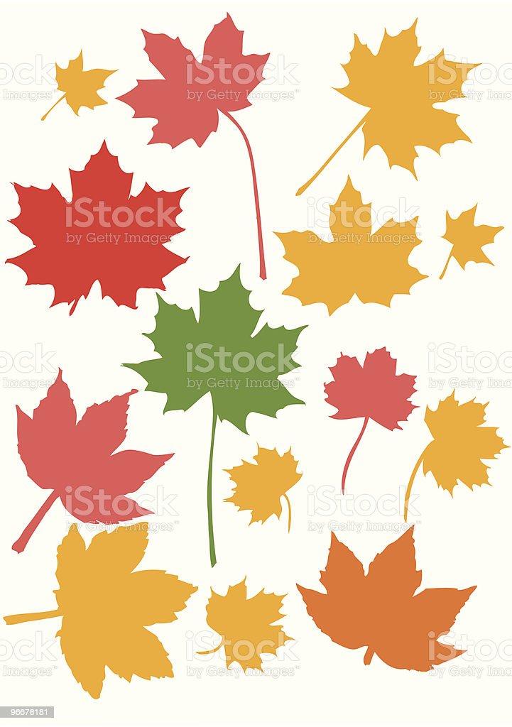 Ahorn-Blätter – Vektorgrafik
