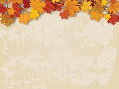 Maple tree branch with autumn red and yellow leaves on old wall background. Vector realistic seasonal  background.