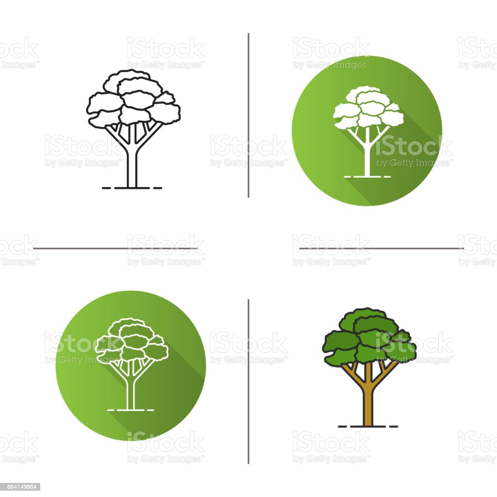 Maple tree icon royalty-free maple tree icon stock vector art & more images of biology