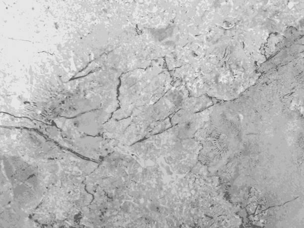 ilustrações de stock, clip art, desenhos animados e ícones de marble texture gray vector background - mármore rocha
