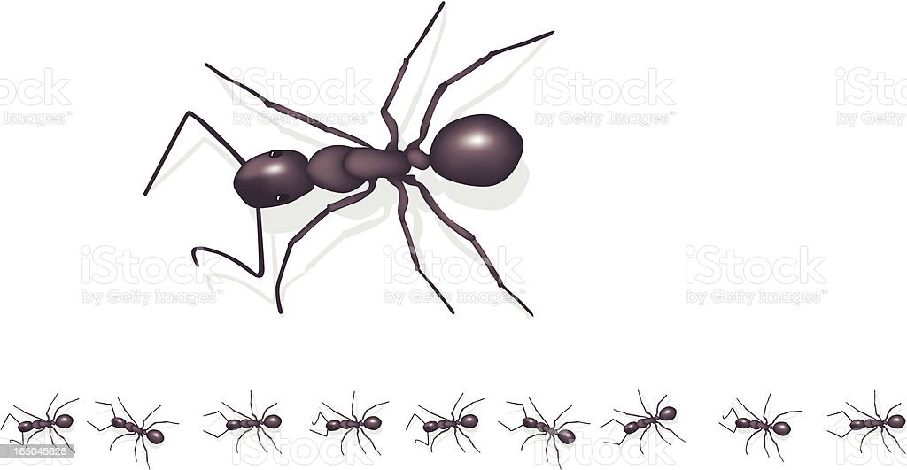 Marching ants royalty-free stock vector art