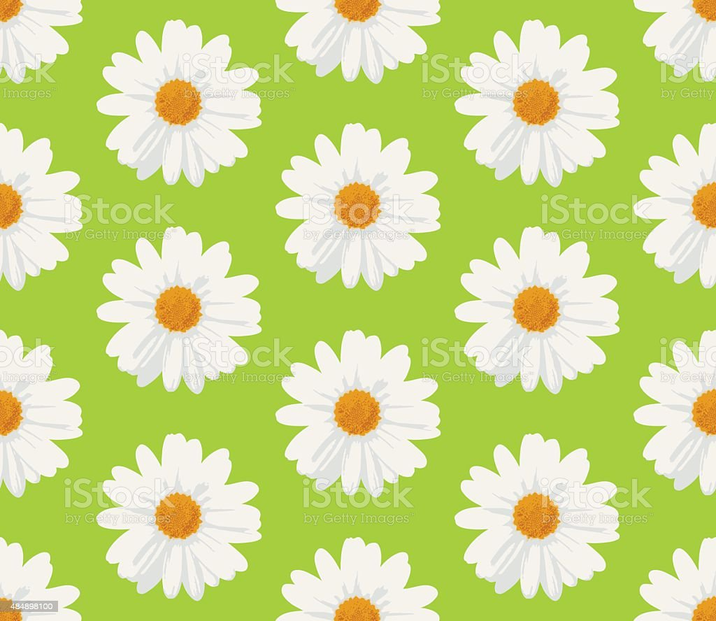 marguerite daisy flowers seamless pattern vector art illustration