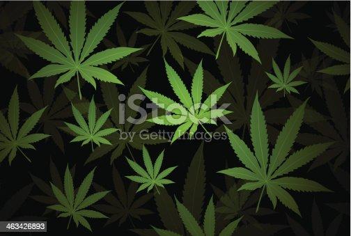 istock Marijuana background 463426893