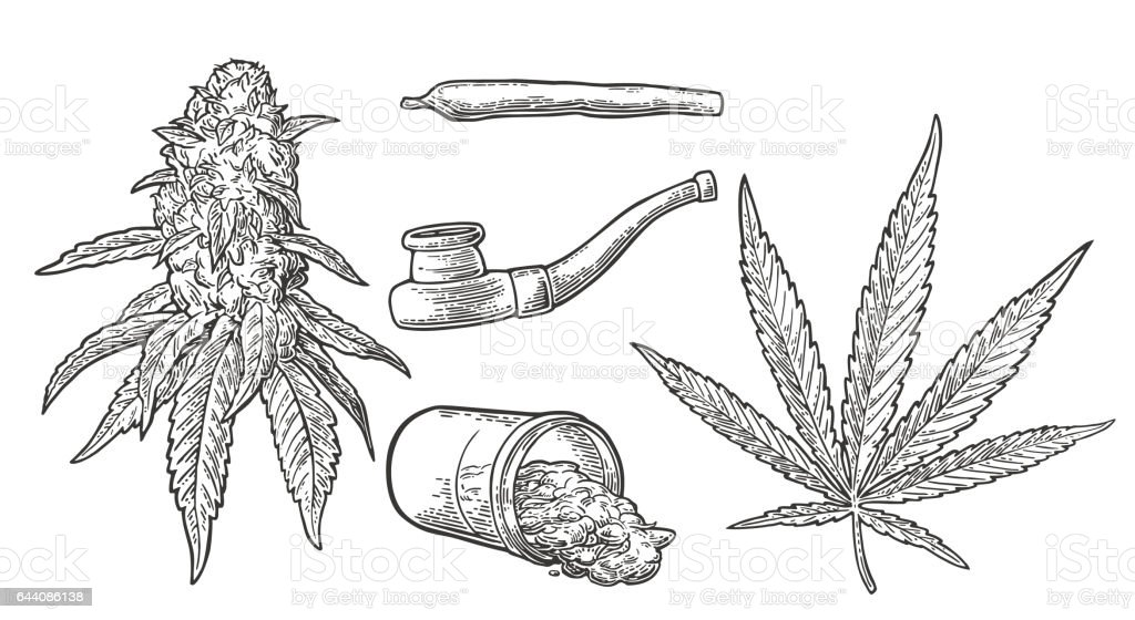 Marijuana buds, leaves, bottle , cigarettes and Pipe for smoking cannabis. vector art illustration