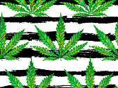 Marijuana. Cannabis leaf seamless pattern. Floral pattern of marijuana and cannabis leaves design vector background. Perfect for wallpapers, pattern fill, web page background, surface texture, textile