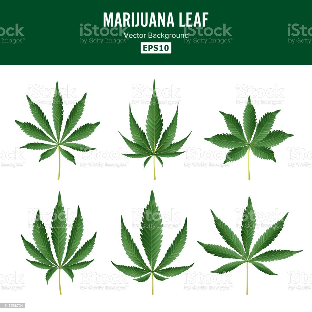 the medicinal use of marijuana or cannabis sativa Hemp extracts equal or less  for information purposes only.