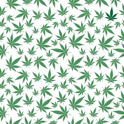 Marijuana Leaves Seamless Pattern