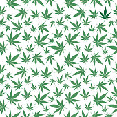 Vector seamless pattern of green marijuana leaves on a white background.