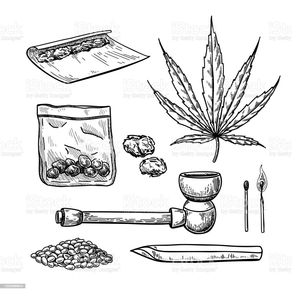 La Marijuana Ou Du Cannabis Dessin Vectoriel Ensemble Planter La
