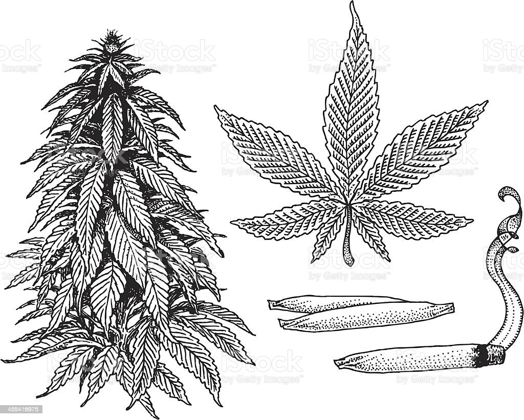 Marijuana Plant Joints Doobies And Leaf Stock Vector Art