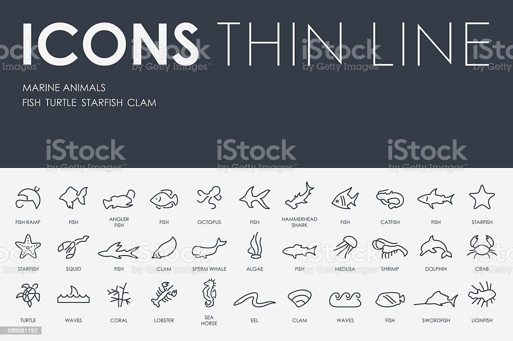 Marine Animals Thin Line Icons vector art illustration