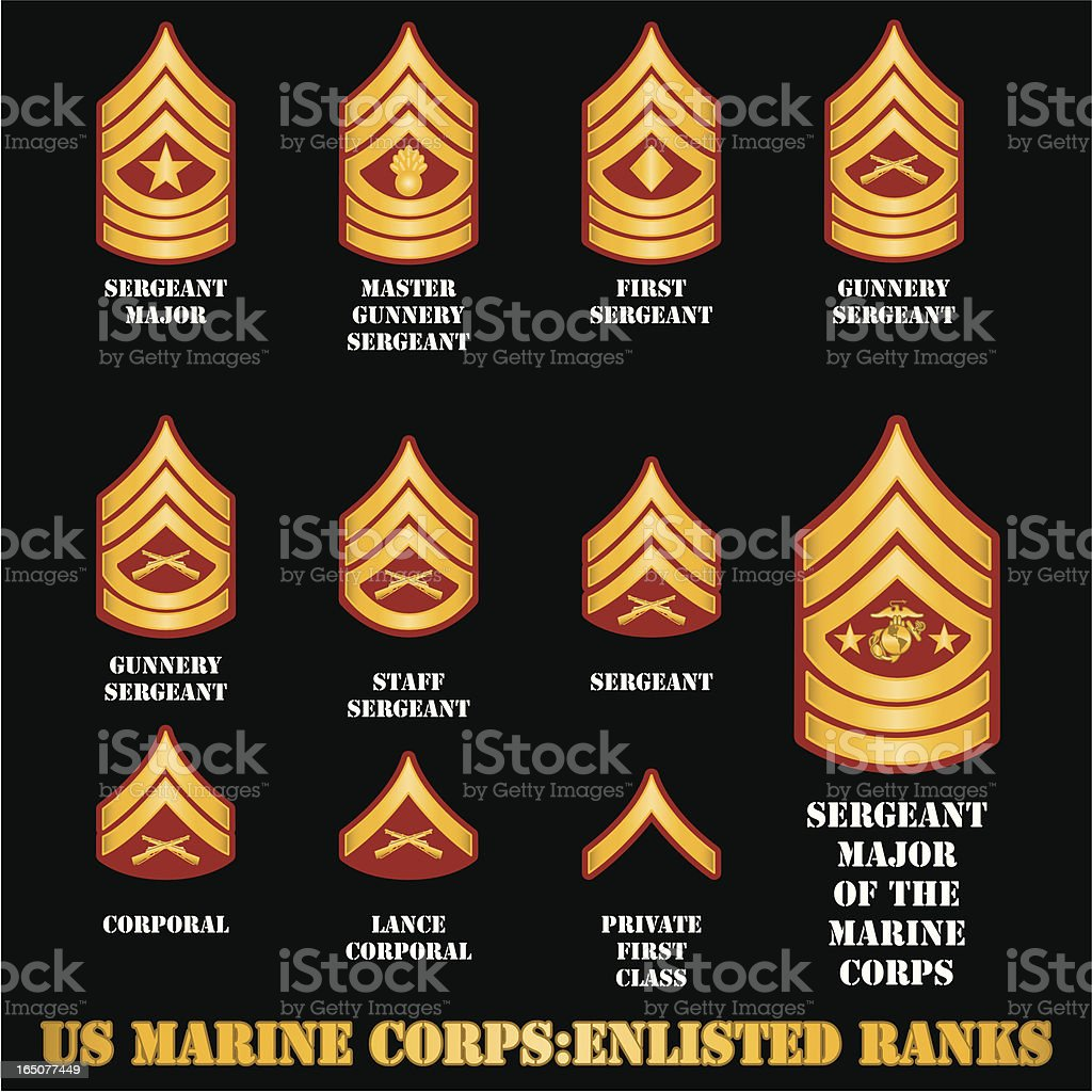 US Marine Corps Enlisted Ranks vector art illustration
