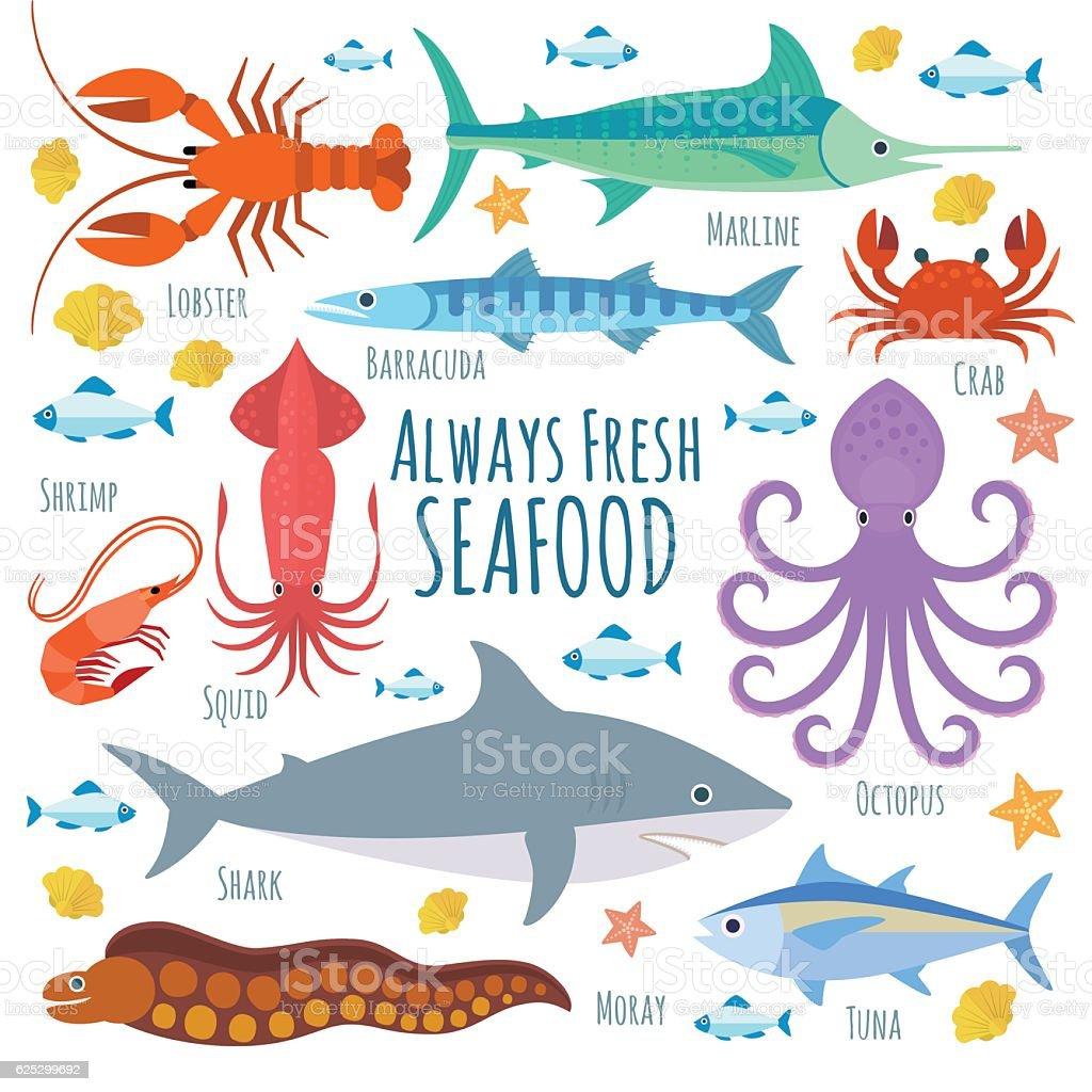 Marine creatures vector art illustration