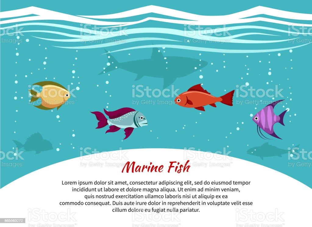 Ilustración de Cartel De Peces Marinos y más banco de imágenes de ...