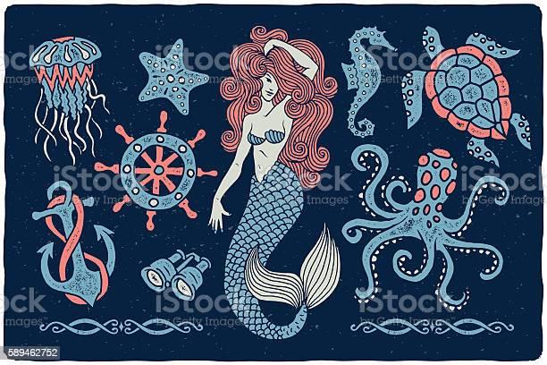 Marine Illustrations Set Stock Illustration - Download Image Now