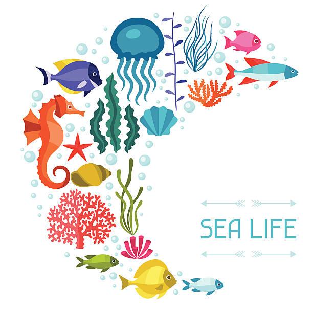 illustrazioni stock, clip art, cartoni animati e icone di tendenza di vita marina design di sfondo con animali. - immerse in the stars